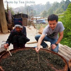 http://teaurchin.blogspot.com/2014/03/lao-ban-zhang-revisited.html