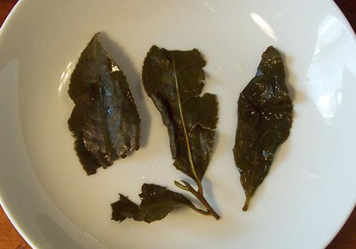 Tea_Blog TFT-ShanLingXiD2