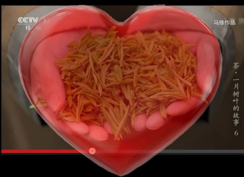 Getting sensory with tea – and hands on with the tea leaves! [photo is screen capture from a CCTV documentary about tea (heart image is clipart found online)]