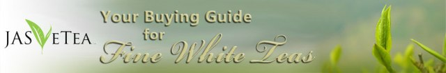 Click on the image to go to the White/Yellow Tea Information page of our store site, links are there to the PDF files for each page (brochure and full guide)