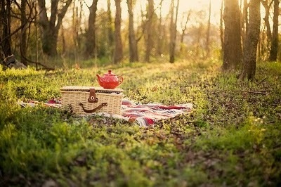 Outdoor tea time (or is it a picnic?) seen on Pinterest